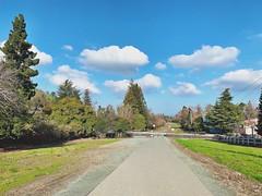 """Cloud Run"" (bradhodges09) Tags: scenics landscapes openspace trees nature diminishingperspective vanishingperspective pavement walkingpath blueskies cloudsandsky cloudscape clouds"