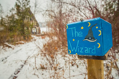 The Wizard (A Great Capture) Tags: north snow ontario hike nature kingcity lakeseneca wizard thewizard agreatcapture agc wwwagreatcapturecom adjm ash2276 ashleylduffus ald mobilejay jamesmitchell on canada canadian photographer northamerica fall autumn automne herbst autunno otoño 2018 cold weather canon eos 6d mark ii 2470mm digital dslr lens scenery scenic outdoor outdoors outside woods trees tree arbre forest wald árvore branch branches neige schnee kingtownship yorkregion mailbox painted