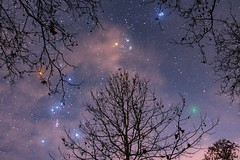Comet 46P/Wirtanen (Scorpion-66) Tags: comet46pwirtanen colors orion pleiades stars canon760d tokina1120 nisinaturalnight