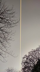 cut at the line (morosus) Tags: sky blue condensate kondenz chemtrail tree trees straight egyenes joke winter tél