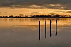Abendstimmung (Wunderlich, Olga) Tags: wasser rügen insel enten spiegelung naturaufnahme landschafsbild mecklenburgvorpommern sonnenuntergang himmel wolken
