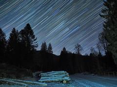 Stelle di Natale (Fernando De March) Tags: stelle notte natale cielo stellato limpido serata foresta startrail
