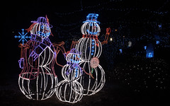 the Snow Family (JoelDeluxe) Tags: rol riveroflights abq biopark nm december 2018 albuquerque biological park pnm light display colors lights sculptures fantasy newmexico hdr joeldeluxe