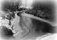 A December Thaw (Dave Linscheid) Tags: creek river stream snow winter rural country blackandwhite tree water landscape watonwancounty mn minnesota usa picmonkey ice