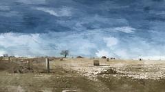 winter (migueldeozarko) Tags: winter prairie fields