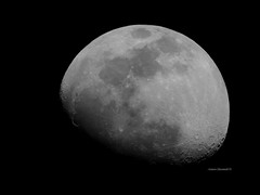 The Moon - Waxing Gibbous phase (Anton Shomali - Thank you for over 2 million views) Tags: dark moon closeup details phase waxinggibbous night march 2019 winter light bright gibbosus visible illuminated sky nightsky nikon coolpix p900