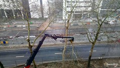 Goodbye to the trees (wwilliamm) Tags: noorderlijn italielei antwerp amberes anvers antwerpen 2019