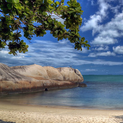 For a monday (Robyn Hooz) Tags: indonesia belitung spiaggia beach mare ocean java albero tree ramo branch nuvole sky