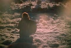 (loonyidea) Tags: 35mm cinestill zenit