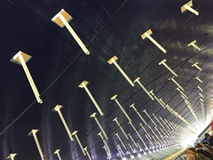 Shanghai Pudong International Airport (hinxlinx) Tags: shanghai airport ceiling pudong international china