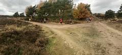 haarlerbergloop 10 km (59)