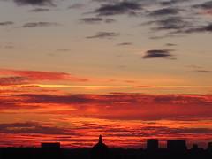 Evening calm (seikinsou) Tags: brussels belgium bruxelles belgique summer midsummer dusk sky golden cloud skyline