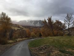 IMG_2853 (August Benjamin) Tags: provorivertrail provocanyonparkway provocanyon provoriver provo orem fall utah mountains trees fallcolors