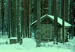 The little timber cottage. (irio.jyske) Tags: house timbercottage cottage landscapes landscapephotographer landscapepic landscapephotos landscape lanscape lakescape landscapepics landscapephotograph forest trees wilderness photographer photograph photos pic nice