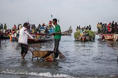 Gambia  fish market (larslaguna) Tags: africa fiskemarknad market mat afrika fish fishmarket gambia marknad fiske fisk
