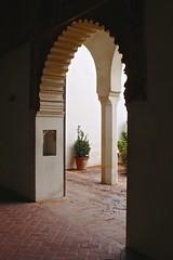Alcazaba de Málaga (Brian Aslak) Tags: málaga andalucía andalusia españa spain europe alcazabademálaga alcazaba moorish fortification