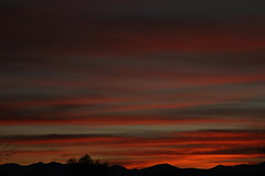 Sunrise 1 16 19 #01 (Az Skies Photography) Tags: sun sky skyline skyscape rio rico arizona az riorico rioricoaz arizonasky arizonaskyline arizonaskyscape cloud clouds red orange gold salmon black january 16 2019 january162019 11619 1162019 canon eos 80d canoneos80d eos80d canon80d arizonasunrise rise sunrise morning dawn