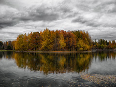 Moscow autumn (janepesle) Tags: russia moscow landscape lake water tree sky clouds outdoors park fall reflection москва отражение пейзаж измайлово
