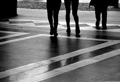 Passi (IVANAMILANO) Tags: galleria milano bianconero gambe passi linee nikond5200