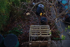 Looking Down on the Front Garden - November 2018 (basswulf) Tags: frontgarden compost compostbin pallets d40 1855mmf3556g lenstagged unmodified 32 image:ratio=32 permissions:licence=c 20181122 201811 3008x2000 lookingdownonthegarden garden normcres oxford england uk