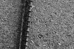 Rebar and Concrete (adamopal) Tags: canon canon7d canon7dmarkii canon7dmkii rebarandconcrete rebar concrete walkabout randomshot random simpleshot macro macro100mm 100mm monochrome blackandwhite blackwhite black white