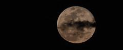 Super Moon 2 19 19 #14 (Az Skies Photography) Tags: super moon supermoon snow snowmoon supersnowmoon night february 19 2019 february192019 21919 2192019 canon eos 80d canoneos80d eos80d canon80d rio rico arizona az riorico rioricoaz sky skyscape skyline arizonasky arizonaskyscape arizonaskyline