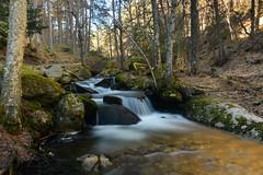 24956.jpg (Ferchu65) Tags: viajesysalidas 2017 evento europa españa febrero madrid fotografosnocturnos canencia invierno decascadaencascadasierrademadridysegovia