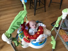 """Luc in His Bouncer • <a style=""""font-size:0.8em;"""" href=""""http://www.flickr.com/photos/109120354@N07/33056549448/"""" target=""""_blank"""">View on Flickr</a>"""