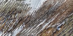Mountain Ripples (Robert Cowlishaw (Mertonian)) Tags: waves valleys zoomingin photophari mertonian wavy robertcowlishaw snow mountainside canonpowershotsx70hs canon powershot sx70hs winter2019 panoramic awe wonder ineffable patterns texture abstract