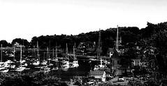 harbor (PHOTOPHANATIC1) Tags: harbor