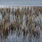 Loch nan Gillean thumbnail