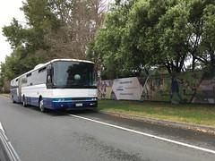 Aussie Bendy | Ex-Bayes (CR1 Ford LTD) Tags: bus buses buspic bendibus bendybus australianbuses newzealandbuses aucklandbuses northshore auckland busdriver articulatedbus articbus oldbus bayescoachlines bayes bayesbuses bayesauckland bayesbendibus