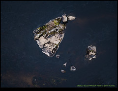 180923-0232-MAVICP-HDR.JPG (hopeless128) Tags: 2018 france drone bridge vienne eurotrip river mavicpro tree manot charente fr