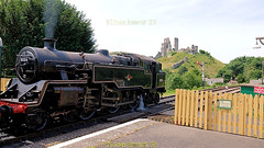 Corfe Castle seen from Corfe Castle Station on the Swanage railway line, in June 2018, the Isle of Purbeck, Dorset, England. (samurai2565) Tags: corfecastle castleindorset england purbecks wareham doomsdaybook bankesestate thenationaltrust swanage sandbanksferry studland swanagerailway corfecastlestation museumcorfecastle isleofpurbeck