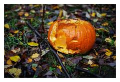 Halloween's passing (fishyfish_arcade) Tags: 35mmf18 autumn d3200 nikon fall nikonnikkor35mmf18gafsdx pumpkin halloween