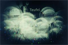 Engel und Teufel / Angel and Devil (michaelfarnschlaeder) Tags: lomo bonn engel teufel color fine art ballons catering schnellimbiss