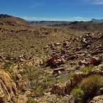 Rugged Landscape Across the Chihuahuan Desert (Big Bend National Park) thumbnail