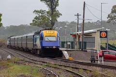 NT33 @ Martin's Creek (Electric Motive) Tags: train trains trainspotting locomotive loco xpt nt33