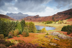 Blea Tarn (Rich Walker Photography) Tags: tarn lakedistrict landscapephotography landscape landscapes trees lakes autumn autumnal cloud sky cumbria nationaltrust nationalpark mountain mountains canon england efs1585mmisusm eos eos80d