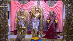Radha Krishna Dev Mangla Darshan on Wed 21 Nov 2018 (bhujmandir) Tags: radha krishna dev lord maharaj swaminarayan hari bhagvan bhagwan bhuj mandir temple daily darshan swami narayan mangla