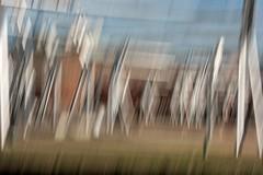 Lo estático toma movimiento. The static takes movement (marisabosqued) Tags: zonaexpo2018 zaragoza movimientointencionadodelacámara icm aceroinoxidable stainlesssteel canonef100300mmf4556 intencionalmovementofcamera snapseed