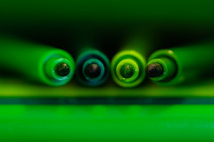 Green -- Macro Mondays (andbog) Tags: sony alpha ilce a6000 sonya6000 mirrorless csc sonya manual vintagelens classiclenses mf manualfocus primelens sonyα emount sonyalpha italy italia it manualfocusing sony⍺6000 sonyilce6000 sonyalpha6000 ⍺6000 ilce6000 apsc sigma 90mm inner indoor interior f28 90mmf28 sigma90mmf28macro macro closeup sigmalens macromondays green verde over100fav