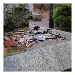 Débris du crash aérien du 3 mars 1974 - Forêt d'Ermenonville (DavidB1977) Tags: france hautsdefrance picardie oise ermenonville forêt fontainechaalis fujifilm x100f débris crash turkishairlines dc10 3mars1974 monument