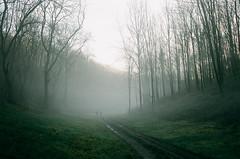 fog walkers (Daniel James Edwards) Tags: 35mm kodak film filmphotography contaxg2 carlzeiss planart245 landscape fog cinematic kodakportra portra400