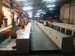 Panaji Fish market (joegoauk73) Tags: joegoauk goa panaji fish market