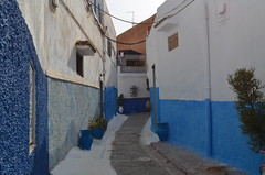 Oudayas streets (Saf') Tags: rabat maroc morocco kasbah oudayas blue white