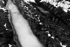 (kotmariusz) Tags: ice road blackandwhite bw monochrome poland winter snow cold monochrom