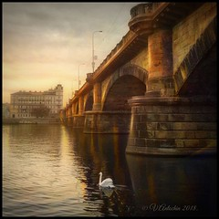 """from the series """"Walking in Prague.""""An evening on the Vltava river. (odinvadim) Tags: textured mytravelgram iphoneart autumn iphone sunset iphoneography iphoneonly evening painterlymobileart river snapseed textures travel iphonex artist editmaster landscape"""