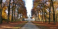 Kasteel Renswoude (Cajaflez) Tags: castle kasteel renswoude autumn autun herbst herfst trees bomen kasteellaan kasteelrenswoude coth5