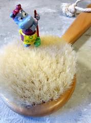 let`s brush (hussi48) Tags: smileonsaturday brush bürste toy spielzeug üei macro